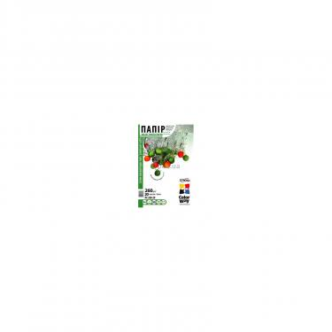 Папір ColorWay 10x15 (ПС260-20) (PS2600204R) - фото 1